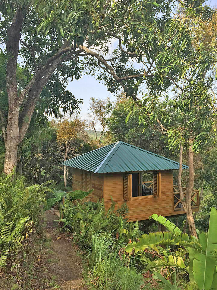 PR Treehouse, Yunque Hotel, PR Rainforest Hotel, PR Eco Resort, PR Ecolodge, Yunque Lodging and PR Glamping