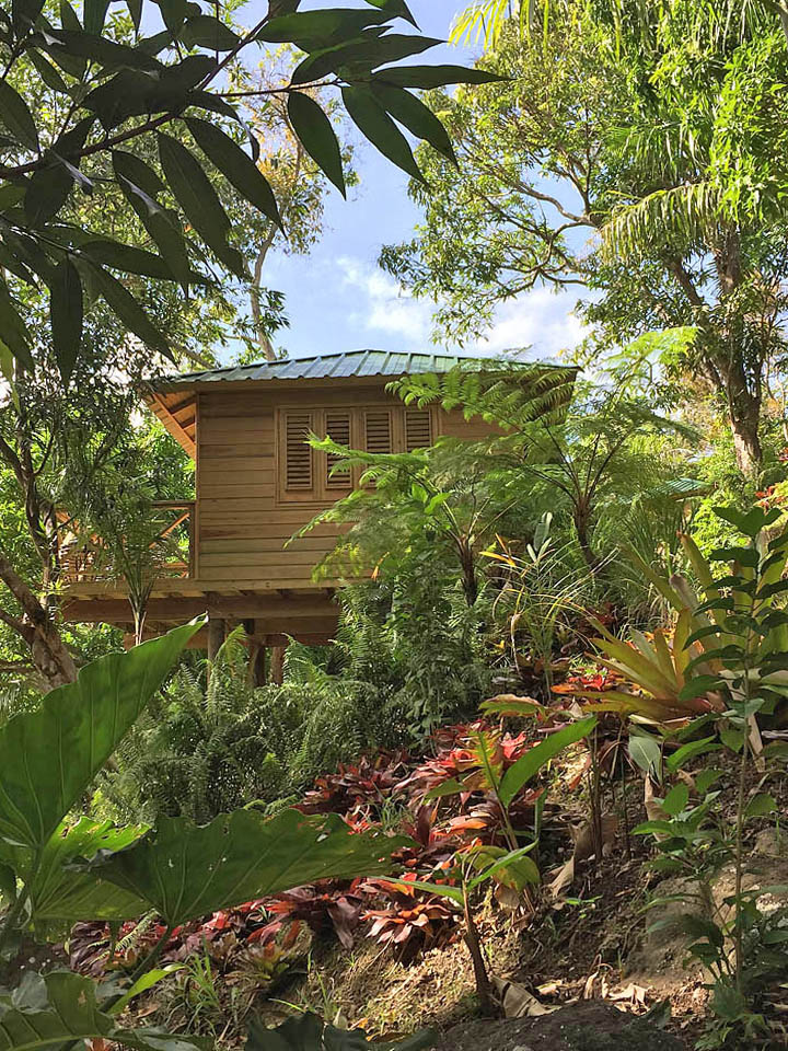 Puerto Rico ecolodge, El Yunque National Forest
